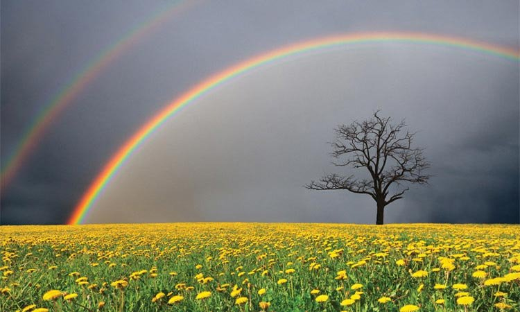 Painting a Rainbow from Life's darkest Storm